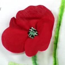 Coussins fleuris