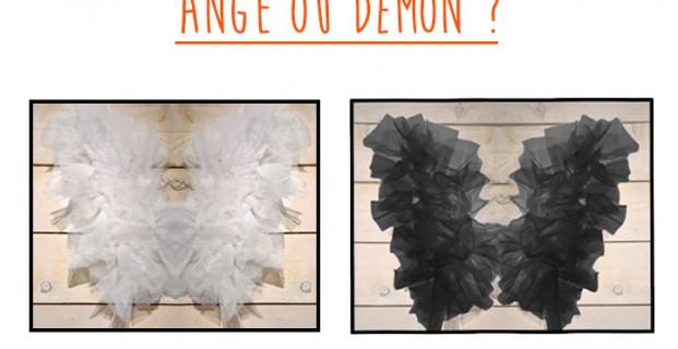 Ailes d'ange & Ailes de démon