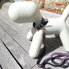 Tutoriel PRISSY Laisse et Collier pour chien